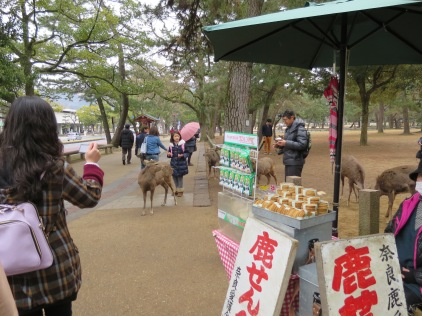 There were lots of people selling deer crackers along this road