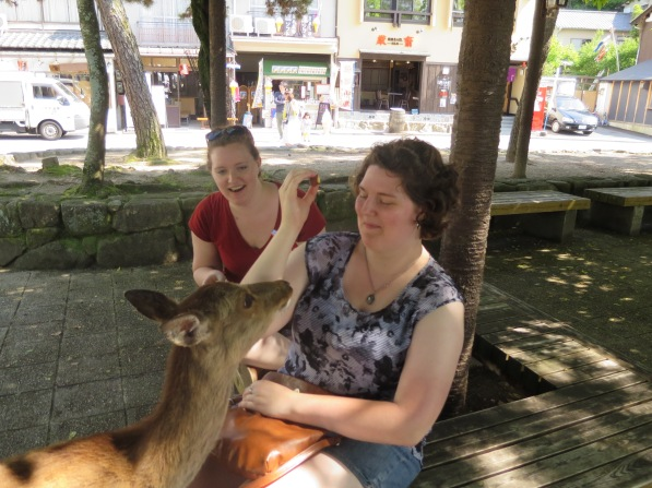 No deer, you may NOT eat my momiji-shaped snack!