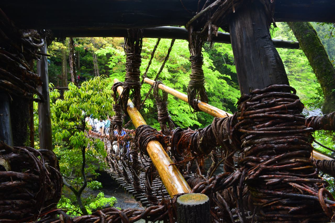 The Vine Bridges of Tokushima